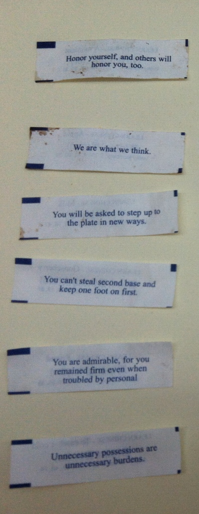 The Fortune Cookie Messages